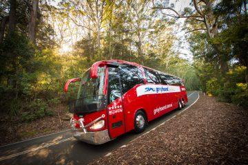 greyhound travel passes hop on hop off km austraia oz epic gap year-2