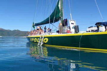 apollo whitsundays sailing adventure airlie beach australia