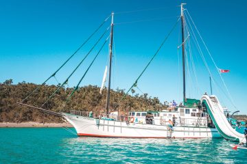 new horizon whitsundays sailing adventure australia backpacker airlie beach