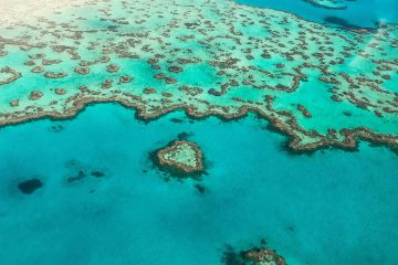 heart reef scenic flight great barrier reef airlie beach whitsundays australia