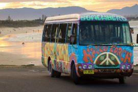 nimbin day trip happy coach byron bay australia