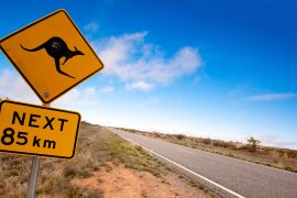 australia 2 week itinerary east coast package deal discount fraser island whitsundays byron bay rtw backpackers