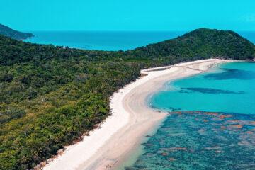 cairns to cape tribulation day trip active tropics explorer